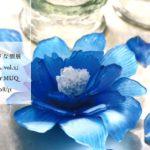 個展とワークショップのお知らせ 2019/8/19-31 「花と絵と、私vol.2」at makers mixer MUQ