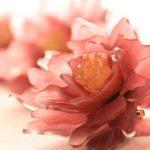 2019/4/9-4/15「ウィークリーショップ 人気作家のザッカ展」in西武渋谷サンイデー
